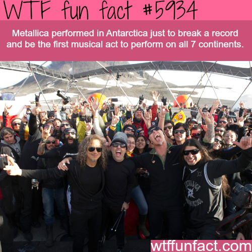 Metallica performed in Antarctica - WTF fun facts