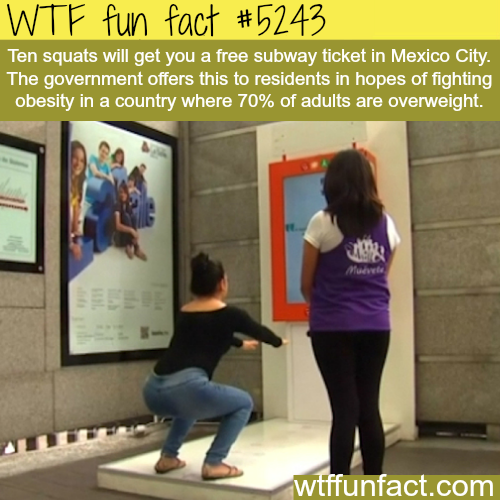 Mexico's newest way of fighting obesity - WTF fun facts