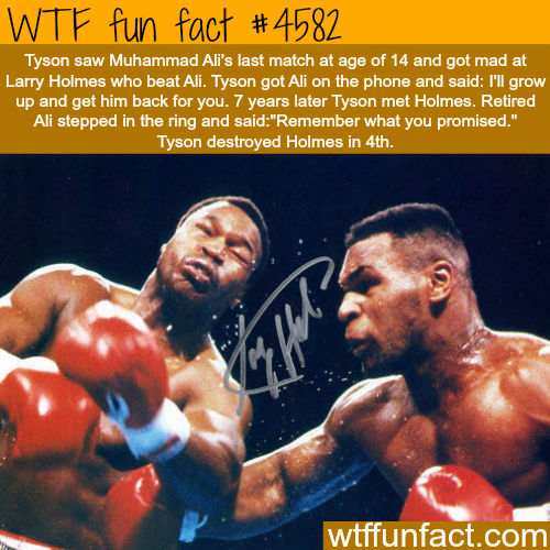Mike Tyson and Muhammad Ali -   WTF fun facts