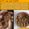 miniature religious relics from the 1500s wtf