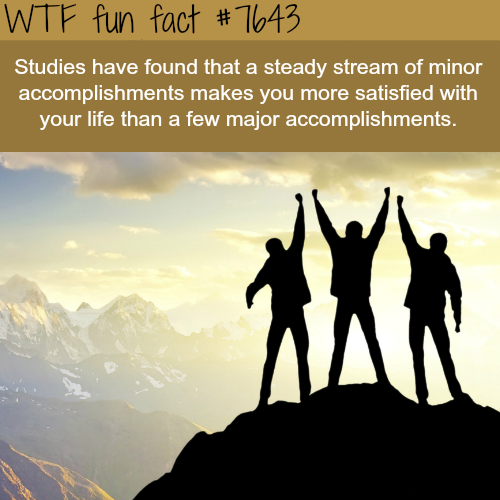 Minor vs Major accomplishments - WTF FUN FACTS