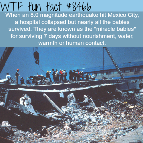 Miracle babies - WTF fun facts