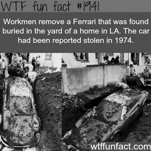Missing Ferrari from the 1974 - WTF fun facts