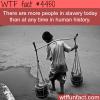 modern day slavery wtf fun facts