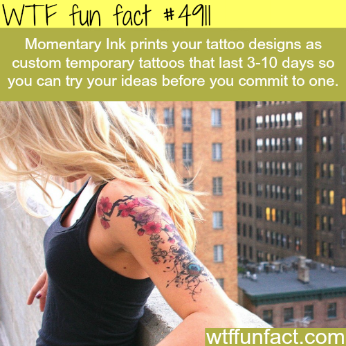 Momentary Ink - WTF fun facts