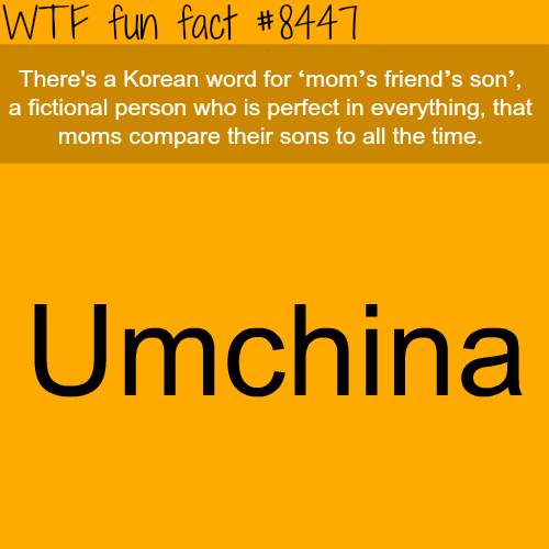 Mom's friend's son - WTF fun facts