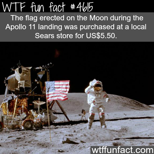 Moon landing facts - WTF fun facts