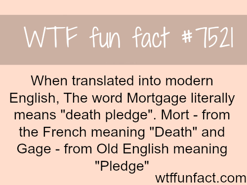 Mortgage - WTF FUN FACTS