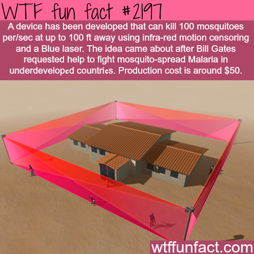 Mosquito laser - WTF fun facts
