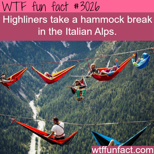 Most dangerous photographs -  WTF fun facts