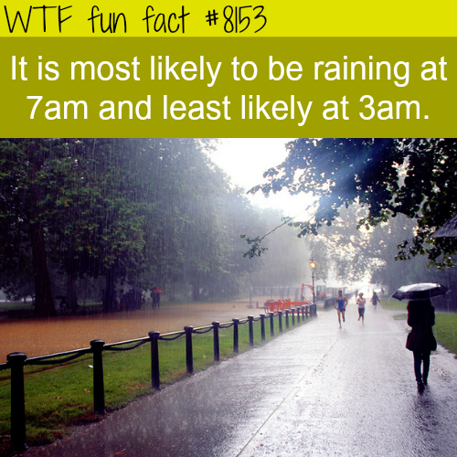 Most likely time to rain - WTF fun fact