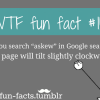 mother of google more of wtf fun facts are