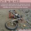 motorcycle swept away from japan to a shore in