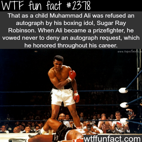Muhammad Ali and Sugar Ray Robinson -WTF funfacts