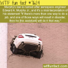 murphys law wtf fun facts