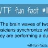 music brain facts