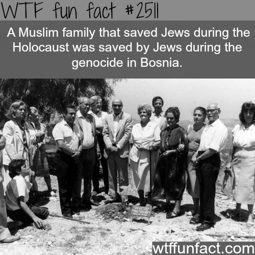Muslim family saves Jews