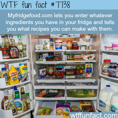 MyFridgeFood - WTF fun facts