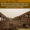 nabi yunus shrine wtf fun facts