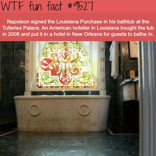 Napoleon - WTF fun fact