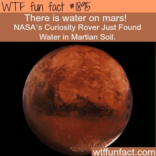 Nasa found water on Mars -WTF fun facts