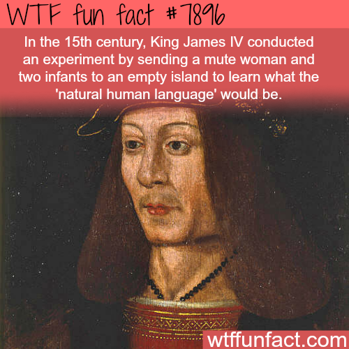 Natural human language - WTF fun facts