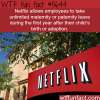 neflix employees benefits wtf fun fact