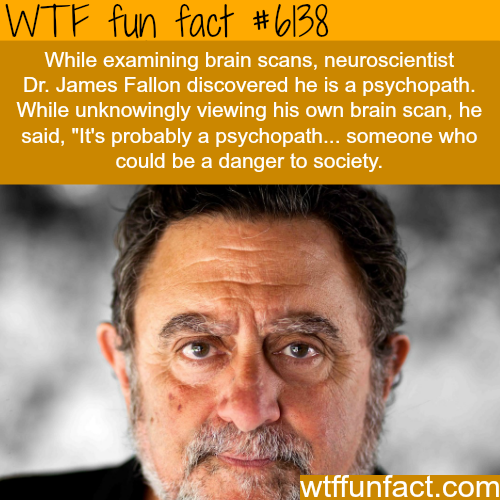 Neuroscientist finds out that he's a psychopath - WTF fun facts