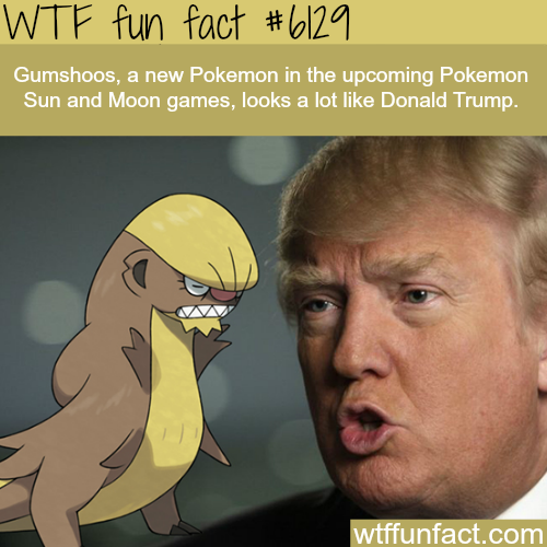 New Pokemon that looks like Donald Trump - WTF fun facts