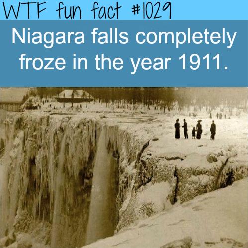 Niagara falls frozencompletely