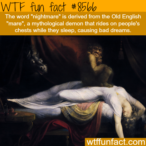 Nightmare - WTF fun facts