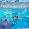 nirvanas nevermind album cover wtf fun facts