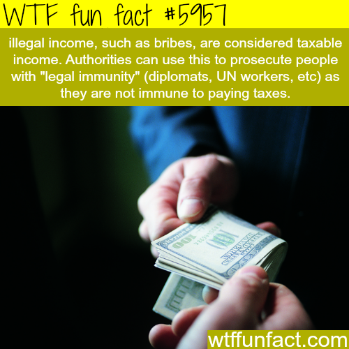 No one is immune from paying taxes - WTF fun facts