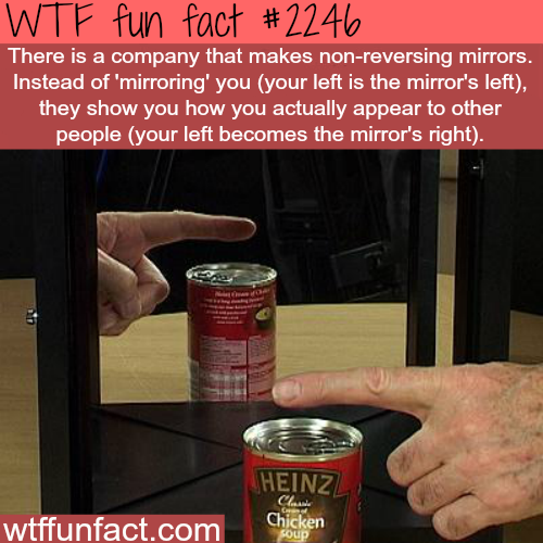 Non-reversing mirrors -WTF fun facts