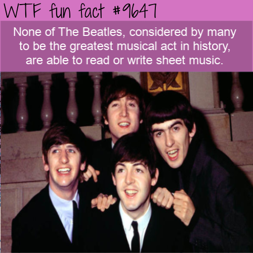 None of The Beatles