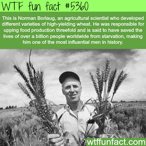 Norman Borlaug facts - WTF fun facts