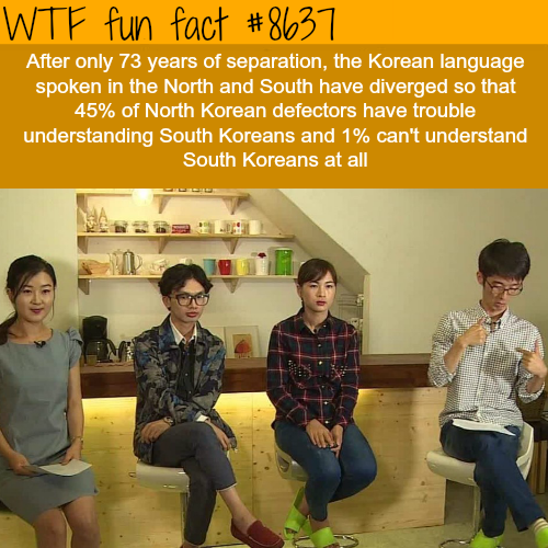 North and South Korean language differences - WTF fun facts