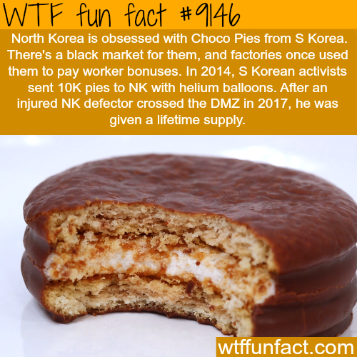 North Korea is obsessed with Choco Pies - WTF Fun Facts