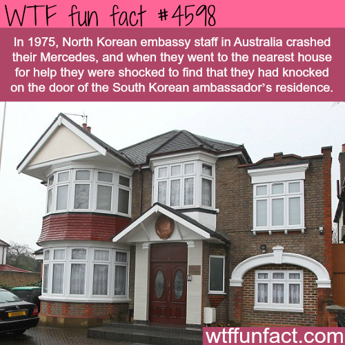 North Korean embassy staff crash their car -   WTF fun facts