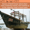 north korean ghost ships wtf fun facts