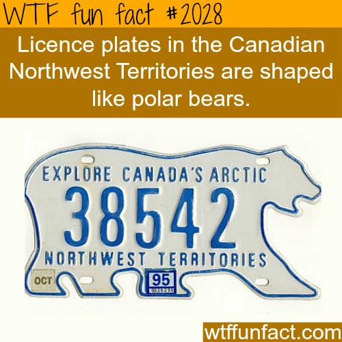 Northwest Territories Canada -WTF fun facts