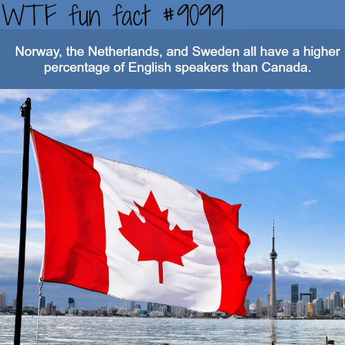 Norway has higher Percentage of English Speakers than Canada  - WTF fun fact