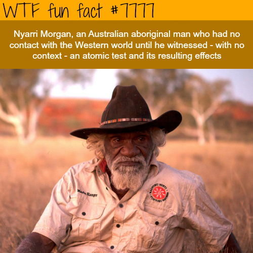 Nyarri Morgan - WTF fun facts