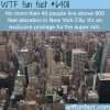 nyc wtf fun facts