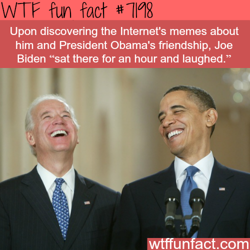 Obama & Biden memes - WTF fun facts