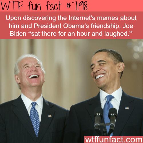 Obama & Biden memes - WTF fun facts
