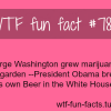 obama brews beer