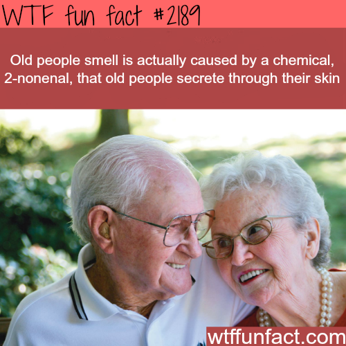 Old people smell (2-nonenal) - WTF fun facts