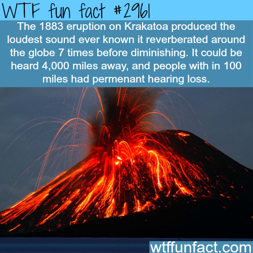 One of the largest volcanic eruption in modern times -  WTF fun facts