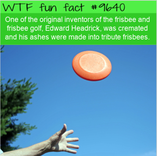 One of the original inventors of the frisbee and frisbee golf